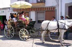 Foto Carruajes de las fiestas de Santa Ana
