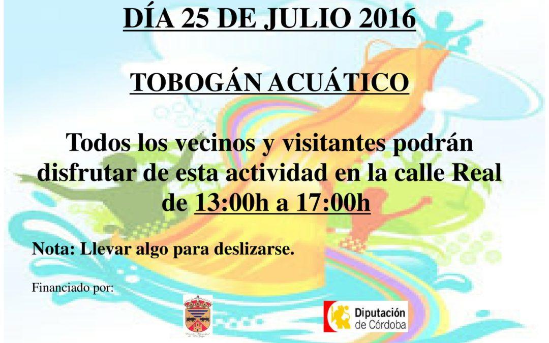 TOBOGÁN ACUÁTICO Y CASTILLO HINCHABLE 1